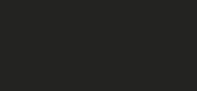 vildnord website logo